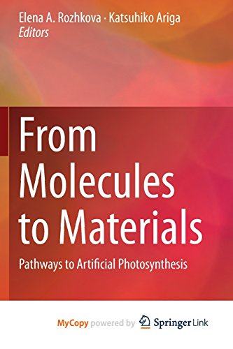 9783319138015: From Molecules to Materials: Pathways to Artificial Photosynthesis