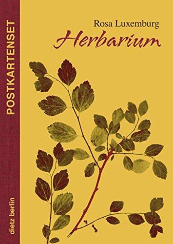 Herbarium Postkartenset - Luxemburg, Rosa