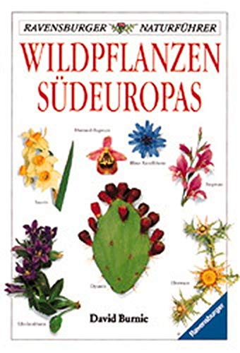 Wildpflanzen Südeuropas. (3332009893) by David Burnie; Derek Hall