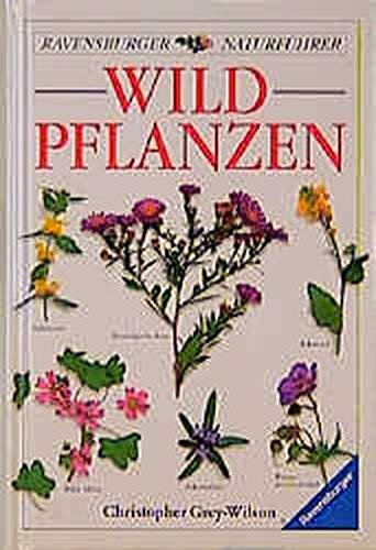 9783332009934: Wildpflanzen.