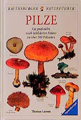 9783332010039: Pilze. Ein profunder, reich bebildeter Führer zu über 500 Pilzarten.