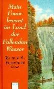 9783401047546: Mein Feuer brennt im Land der Fallenden Wasser. ( Ab 14 J.).
