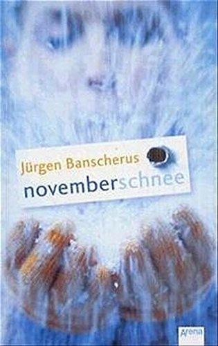 9783401053523: Novemberschnee