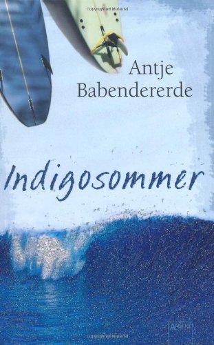 9783401063355: Indigosommer