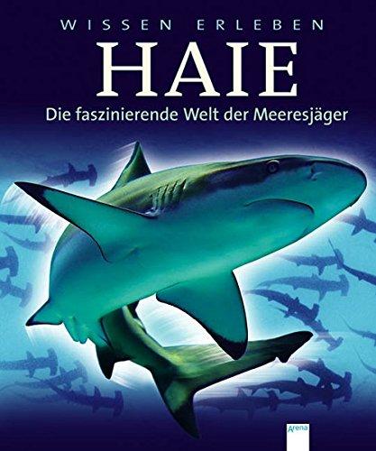 9783401063461: Wissen erleben Haie - Die faszinierende Welt der Meeresjäger