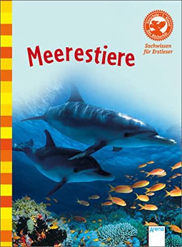 Meerestiere: Der Bücherbär. Sachwissen für Erstleser (Hardback): Fiona Patchett