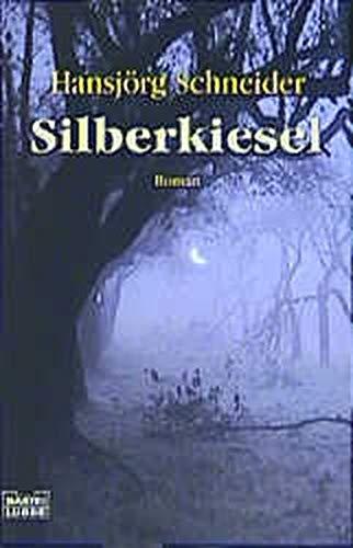 9783404146529: Silberkiesel