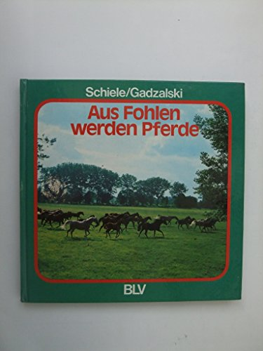 9783405112424: Aus Fohlen werden Pferde