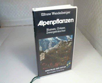 9783405128685: Alpenpflanzen. Blumen, Gräser, Zwergsträucher