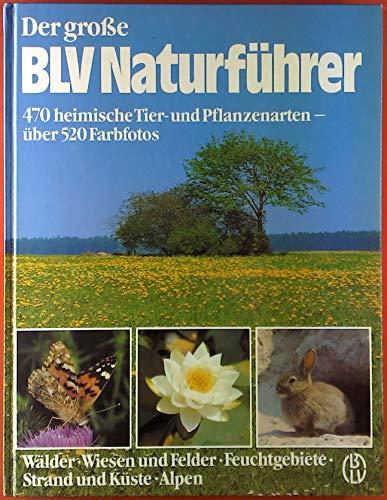 9783405129705: Der grosse BLV Naturf�hrer. 470 heimische Tier- und Pflanzenarten - W�lder, Wiesen und Felder, Feuchtgebiete, Strand und K�ste, Alpen