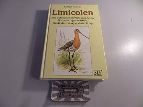 9783405136475: Limicolen. Alle europäischen Watvogel-Arten. Bestimmungsmerkmale, Flugbilder, Biologie, Verbreitung