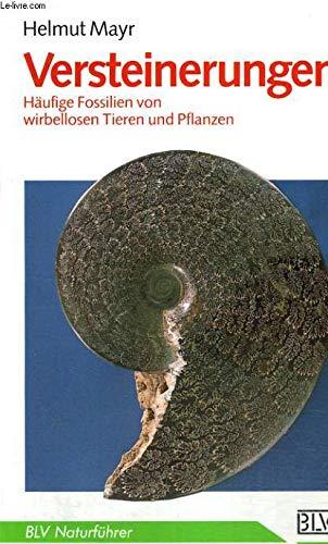 9783405138189: Versteinerungen. Häufige Fossilien von wirbellosen Tieren und Pflanzen