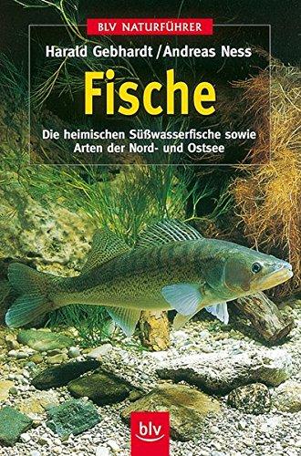 9783405151065: BLV Taschenbücher, Fische