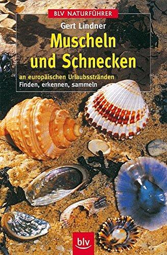 9783405151195: Muscheln und Schnecken an europäischen Urlaubsstränden.