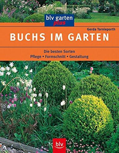 9783405160586: Buchs im Garten: Pflege. Formschnitt. Gestaltung. Die besten Sorten