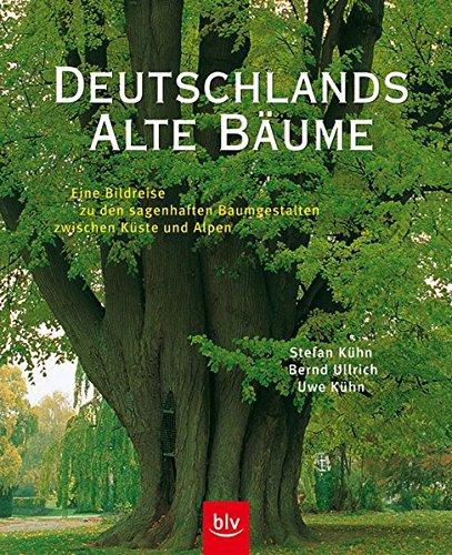 9783405161071: Deutschlands alte Bäume