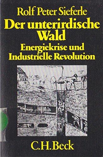 9783406084669: Der unterirdische Wald. Energiekrise und Industrielle Revolution.