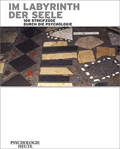 9783407472052: Im Labyrinth der Seele: 100 Streifzüge durch die Psychologie