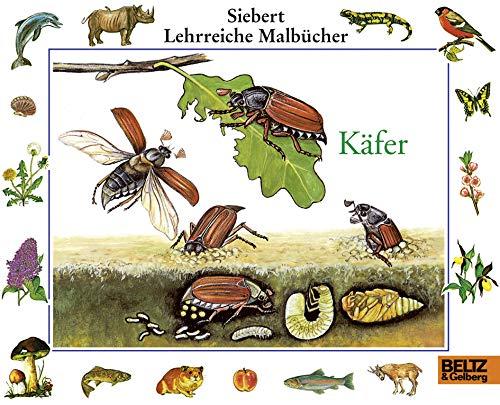 9783407773128: Käfer