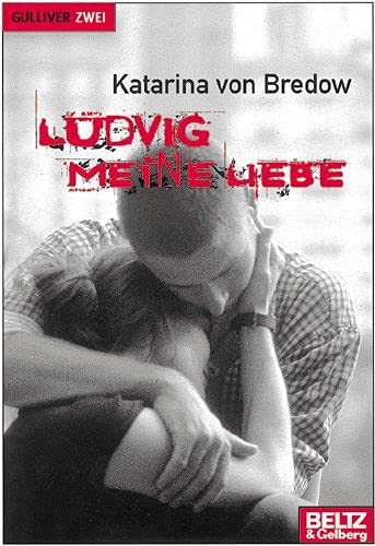 9783407787842: Ludvig meine Liebe