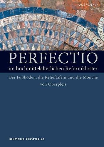 Perfectio im hochmittelalterlichen Reformkloster: Axel Werbke
