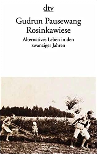 9783423114899: Rosinkawiese - Alternatives Leben in Den Zwanziger Jahren (Fiction, Poetry & Drama)