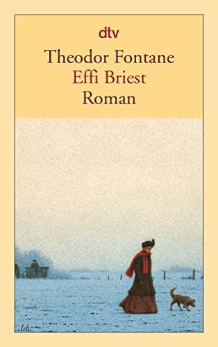9783423124997: Theodor Fontane (German Edition)