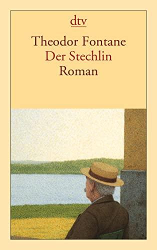 9783423125529: Der Stechlin