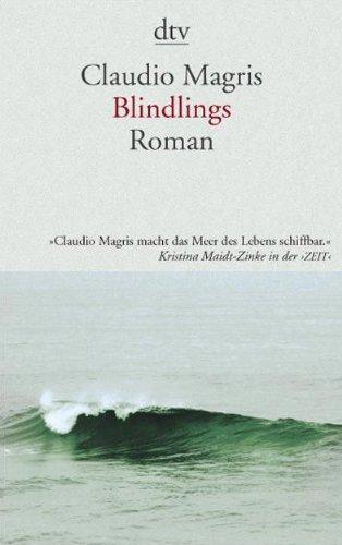 9783423137324: Blindlings (German Edition)