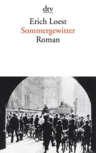 9783423138796: Sommergewitter: Roman