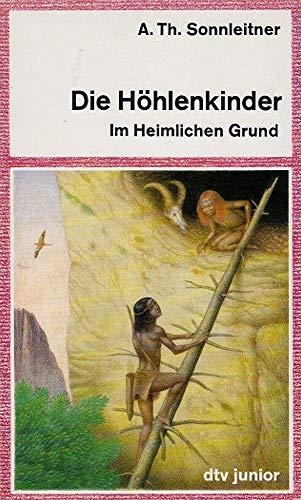 9783423701075: Im Heimlichen Grund, Bd 1