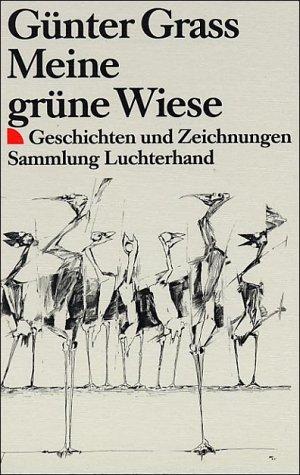 9783423710343: Meine Grune Wiese (English and German Edition)