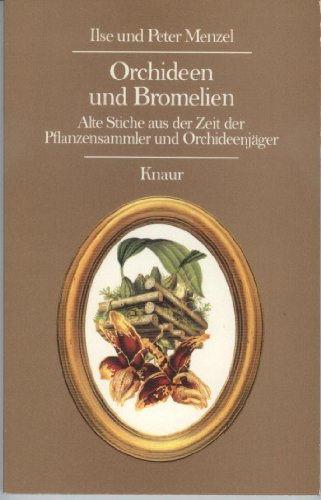 9783426042014: Orchideen und Bromelien
