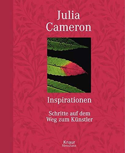 9783426666678: Inspirationen: Schritte auf dem Weg zum Künstler