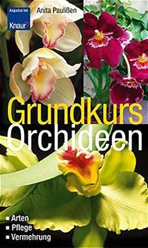 9783426667293: Grundkurs Orchideen. Arten, Pflege, Vermehrung.