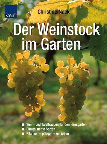 9783426668542: Der Weinstock im Garten