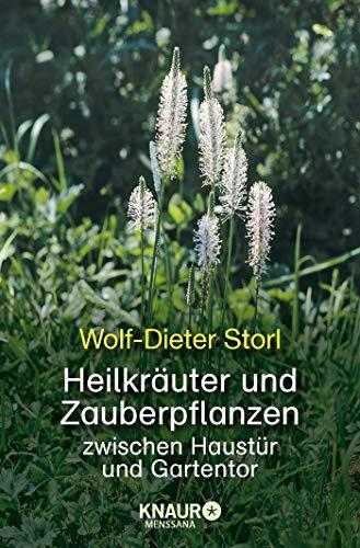 9783426873243: Heilkräuter und Zauberpflanzen: zwischen Haustür und Gartentor