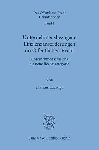 Unternehmensbezogene Effizienzanforderungen im Offentlichen Recht: Unternehmenseffizienz als neue ...