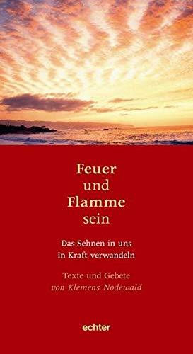 9783429035303: Feuer und Flamme sein
