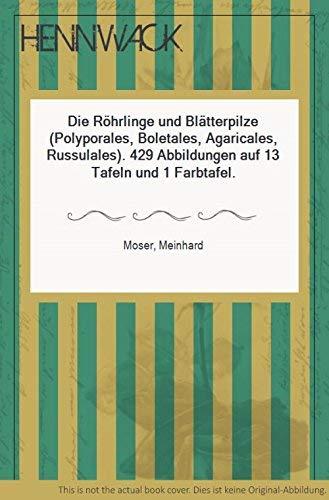 9783437201837: Kleine Kryptogamenflora: Die Röhrlinge und Blätterpilze