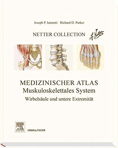 9783437216350: Netter Collection  Muskuloskelettales System 02: Wirbelsäule und untere Extremität