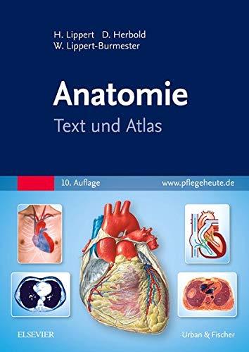 Anatomie: Text und Atlas: Herbert Lippert, Desiree Herbold, Wunna Lippert-Burmester