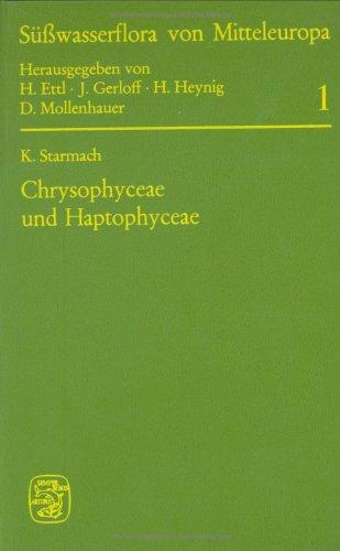 9783437304026: Chrysophyceae Und Haptophyceae: 001 (Suesswasserflora von Mitteleuropa)