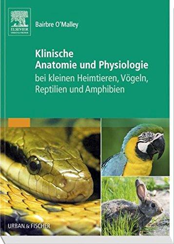 9783437319037: Klinische Anatomie und Physiologie bei kleinen Heimtieren, Vögeln, Reptilien und Amphibien
