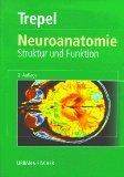 9783437412967: Neuroanatomie. Struktur und Funktion. 2. überarbeitete Auflage