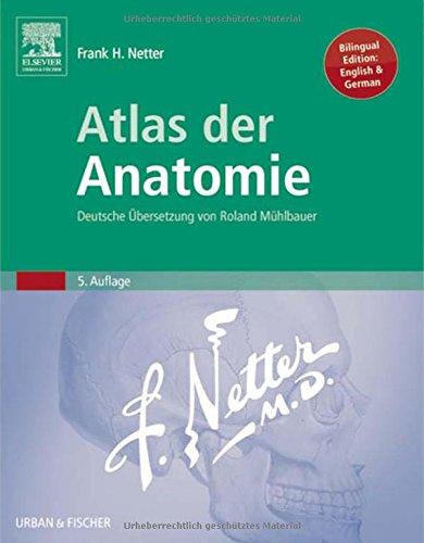 9783437416033: Atlas der Anatomie: Deutsche Übersetzung von Roland Mühlbauer, 5e (Netter Basic Science)