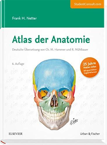 Atlas der Anatomie von Frank H. Netter: Urban & Fischer, Elsevier ...