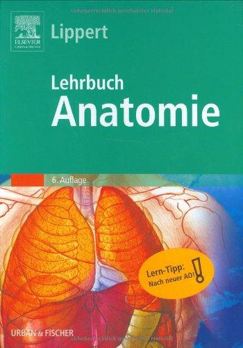 Lehrbuch Anatomie anschauliche und praxisnahe Darstellung der Anatomie mit Prüfungswissen der ...