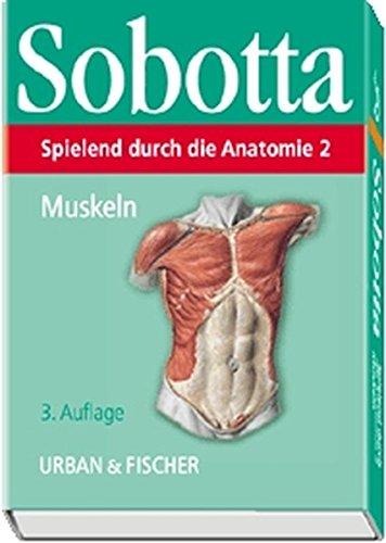 anatomie lernkarten die - ZVAB