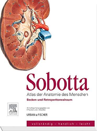 9783437441165: Sobotta, Atlas der Anatomie des Menschen Heft 6 ...